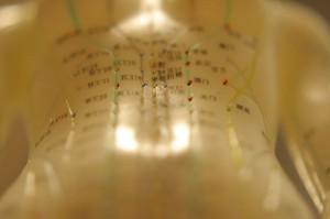 american-acupuncture-abdomen